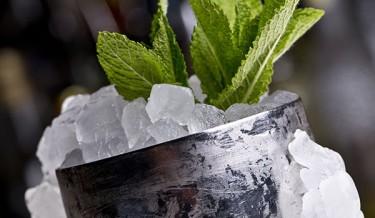 Cocktail Journals Recipe - Mint Julep